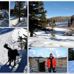 Sunlight Cross Country Ski Trails